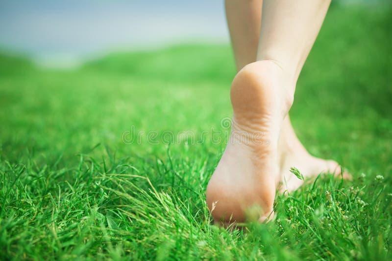 Pés da mulher na grama verde