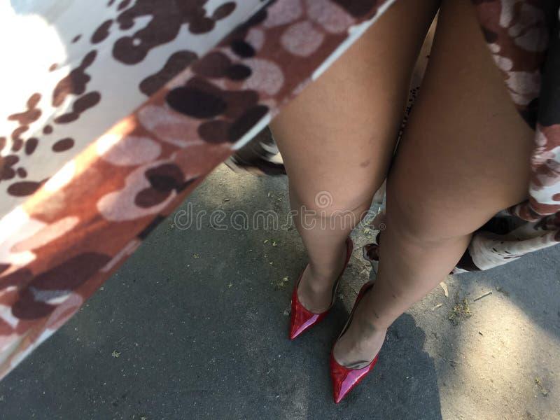 Pés da mulher nas calças justas bonitas imagem de stock