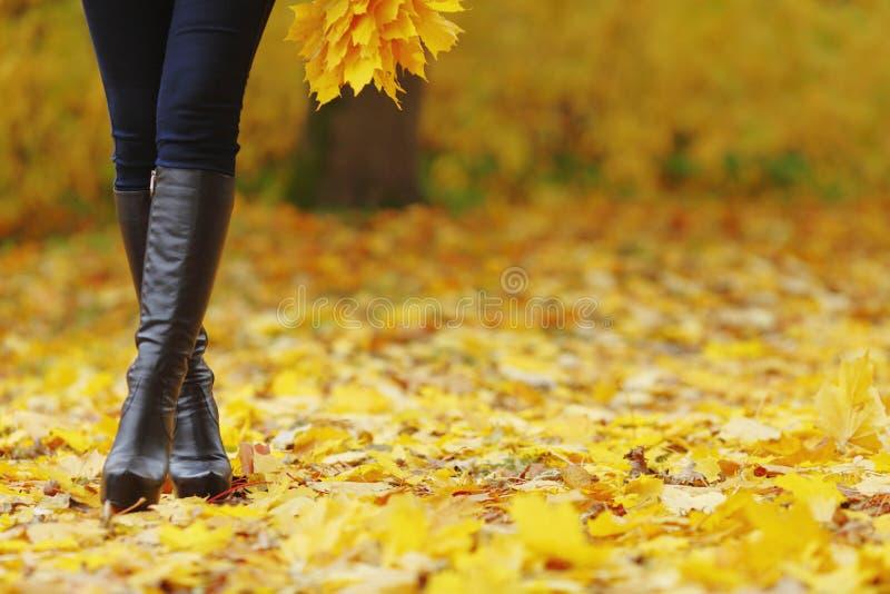 Pés da mulher no parque do outono fotos de stock royalty free