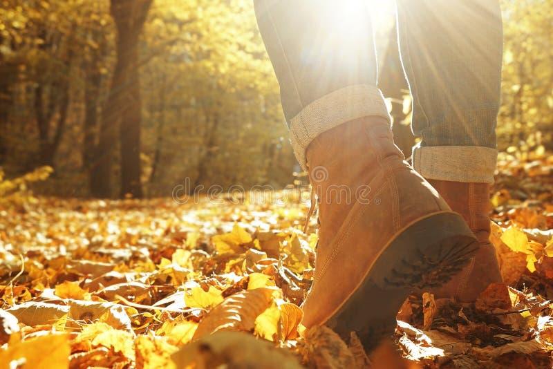 Pés da mulher que andam no parque do outono imagens de stock