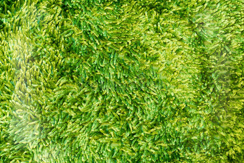 Pés de limpeza verdes capacho ou textura do tapete fotos de stock royalty free