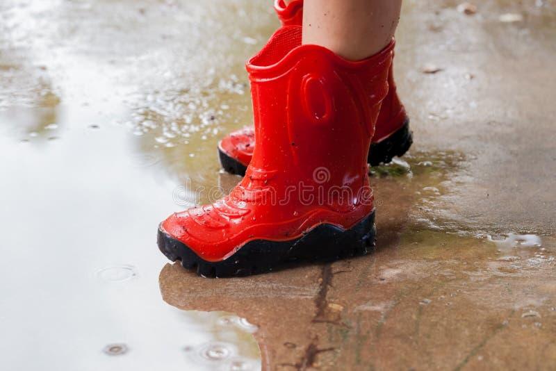 Pés de pares vestindo da criança de botas de borracha vermelhas na poça o da água imagem de stock