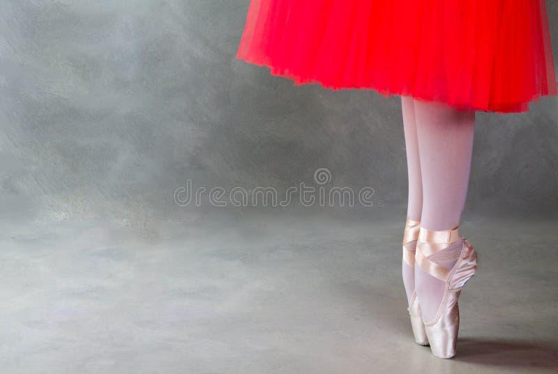 Pés do dançarino de bailado em pointes, fundo cinzento fotos de stock royalty free