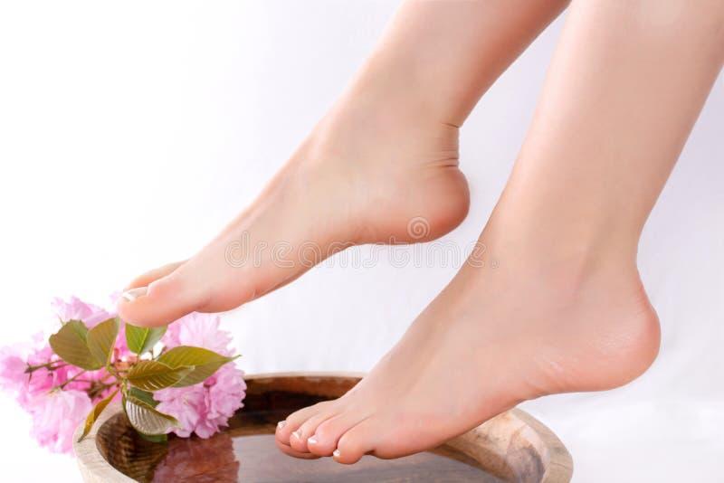 Pés e pés da menina com o pedicure francês na beleza e o estúdio dos termas na bacia de madeira com a flor da água e do rosa da d imagens de stock
