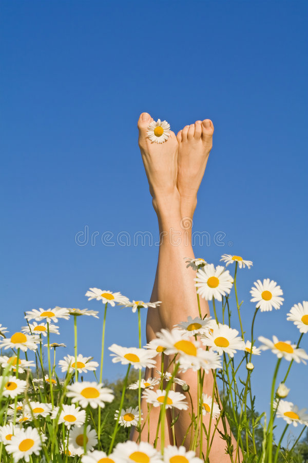 Pés ensolarados felizes com flores imagens de stock royalty free