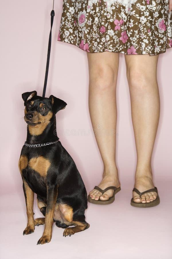 Pés fêmeas com cão. fotografia de stock royalty free