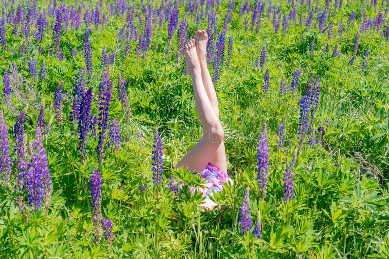 Pés fêmeas delgados entre as flores O conceito do verão e do lazer fotografia de stock royalty free