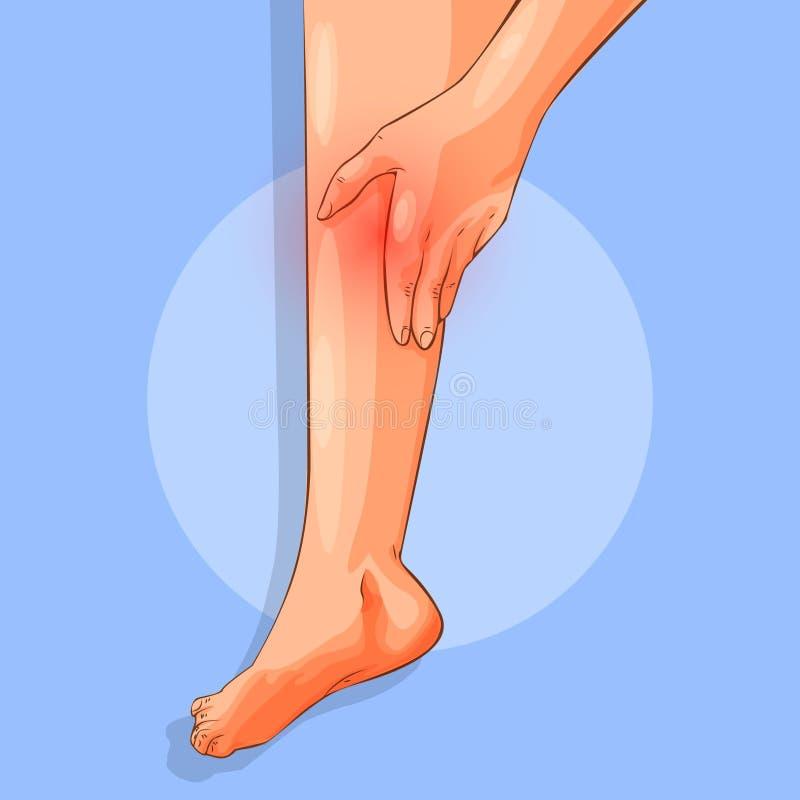 Pés fêmeas delgados, sentando a vista cansado, lateral A mão da mulher que toca no tornozelo, no tendão do salto e no pé Passeio  ilustração stock