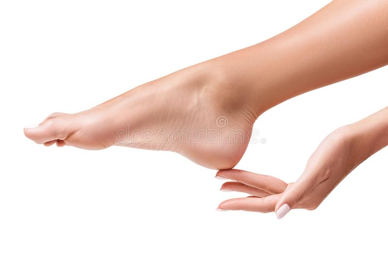 Pés fêmeas perfeitos A mão toca no pé elegante foto de stock