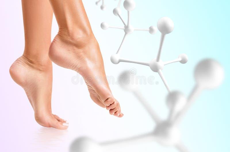 Pés fêmeas perfeitos perto das moléculas brancas foto de stock royalty free