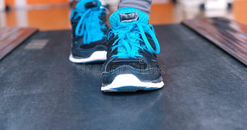 Pés fêmeas pretos nas sapatilhas foto de stock royalty free