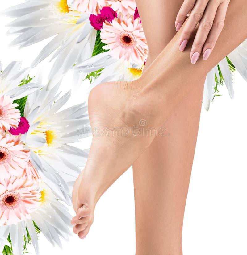 Pés fêmeas saudáveis perfeitos com o ramalhete de flores frescas imagens de stock
