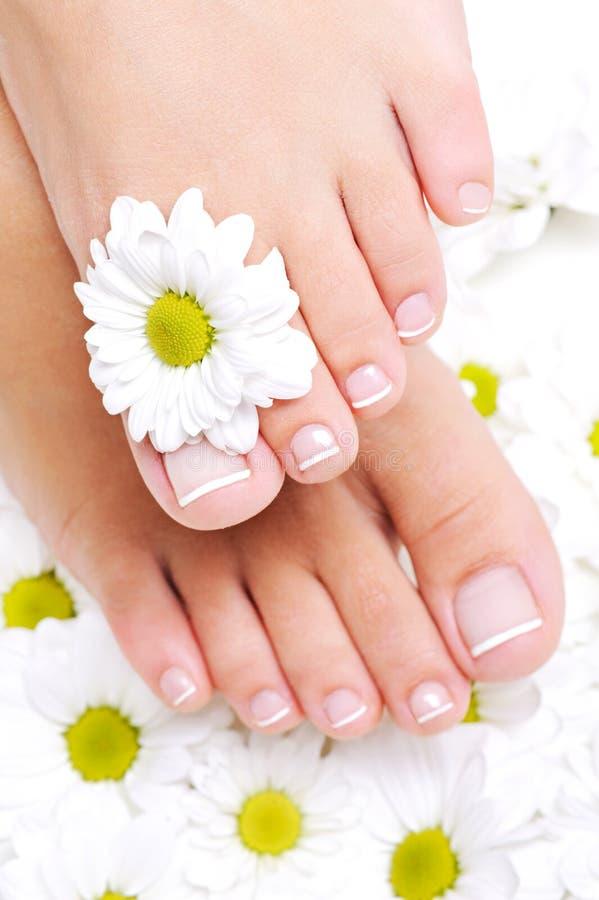Pés fêmeas Well-groomed com toenails bonitos fotografia de stock royalty free