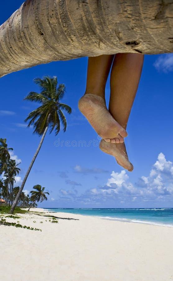 Pés na praia fotos de stock