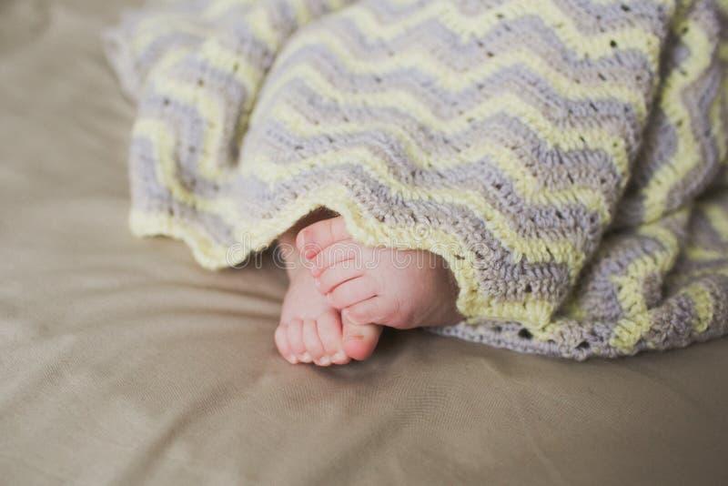 Pés recém-nascidos adoráveis do bebê foto de stock