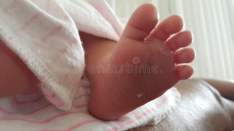 Pés recém-nascidos bonitos do bebê fotos de stock royalty free