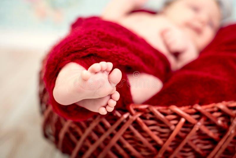 Pés recém-nascidos do bebê contra uma cobertura vermelha Fim acima fotografia de stock royalty free