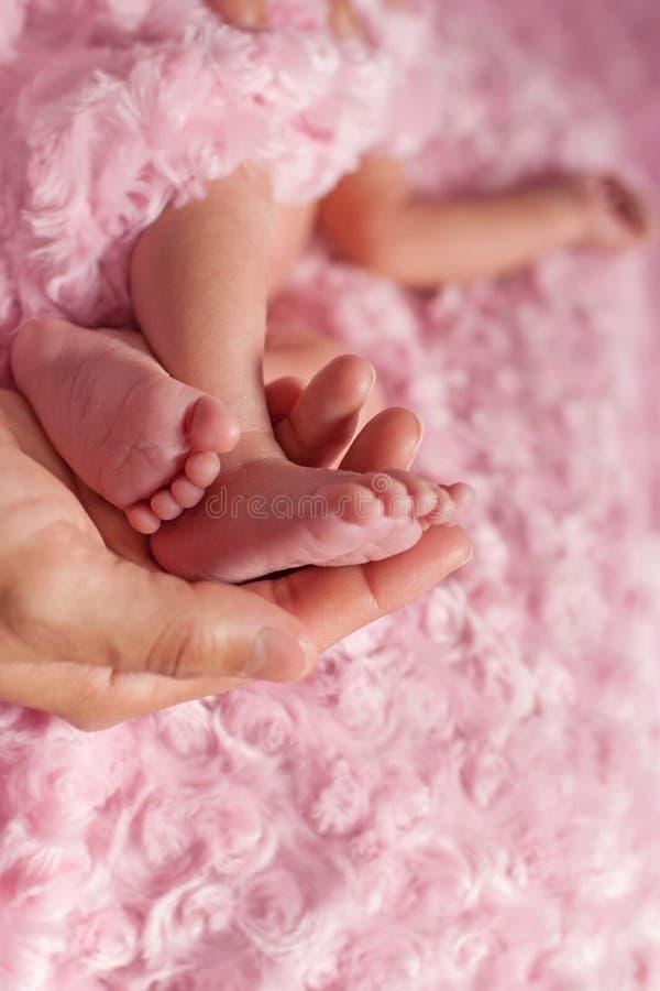 Pés recém-nascidos do ` s na mão do ` s da mãe fotos de stock royalty free