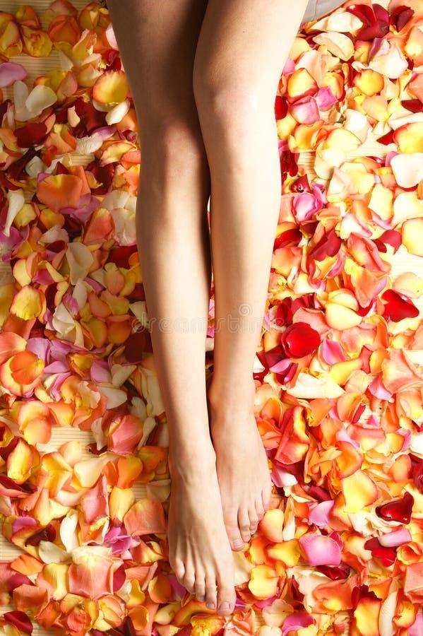 Pés 'sexy' de uma mulher nova nas pétalas caídas imagem de stock royalty free