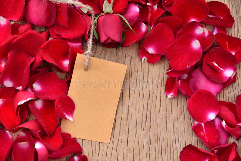 Download Pétalas Cor-de-rosa Vermelhas Foto de Stock - Imagem de vista, beleza: 65580316