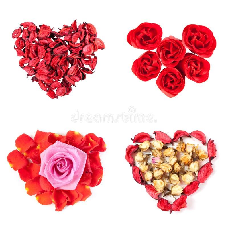 Pétalas de Rosa, dobradas na forma de um coração, no símbolo do amor e no dia de Valentim imagens de stock