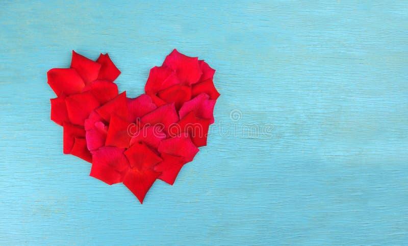 Pétalas de Rosa na forma do coração imagem de stock