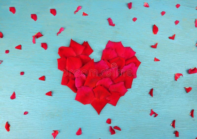 Pétalas de Rosa na forma do coração fotografia de stock