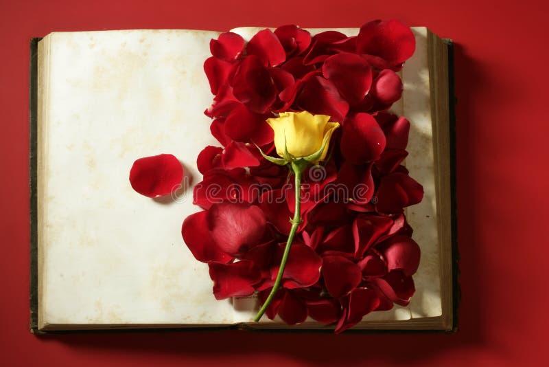 Pétalas de Rosa sobre o livro envelhecido velho imagens de stock royalty free