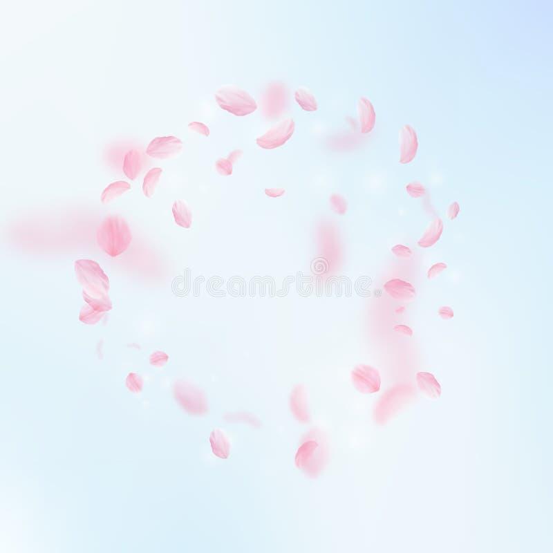 Pétalas de Sakura que caem para baixo Quadro cor-de-rosa romântico das flores Pétalas do voo no fundo do quadrado do céu azul ilustração do vetor