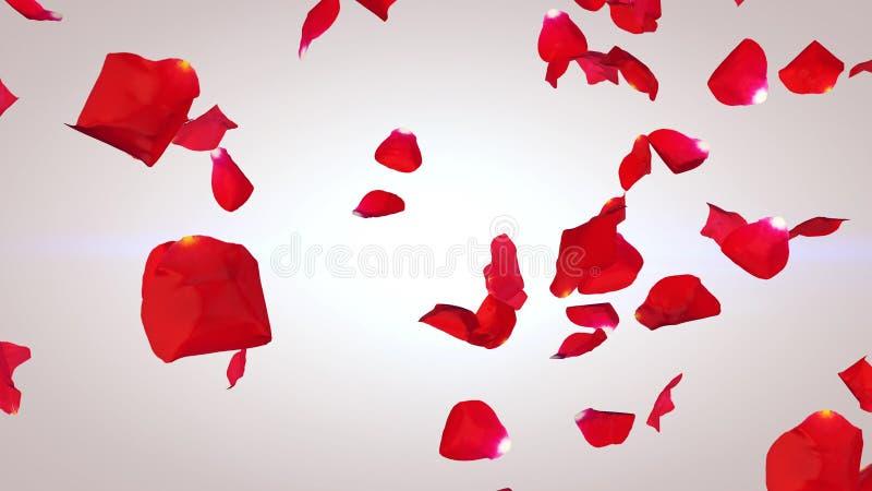 Pétalas do voo de rosas vermelhas fotografia de stock