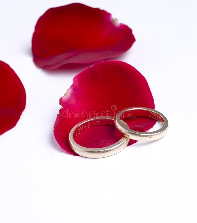 Pétalas e anéis vermelhos imagem de stock