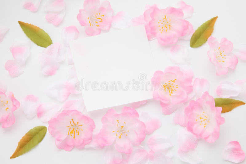 Pétalas e cartão da mensagem fotografia de stock