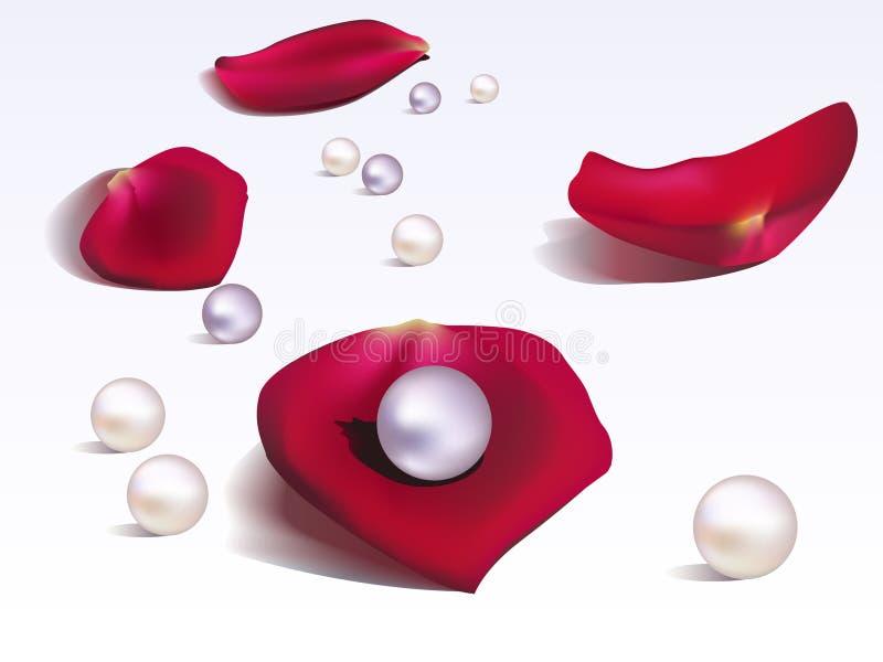 Pétalas e pérolas de Rosa ilustração stock