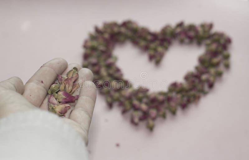 Pétales de rose et coeur photos stock