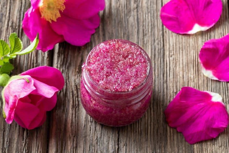Pétales de rose de Rugosa écrasés avec du sucre de canne image libre de droits