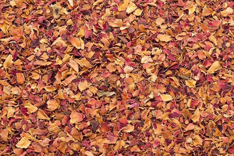 Pétales de rose secs organiques (centifolia de Rosa Ã-) image stock
