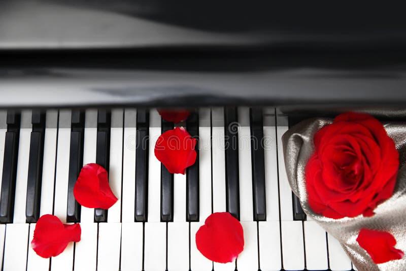 Pétales de rose sur le piano photo libre de droits