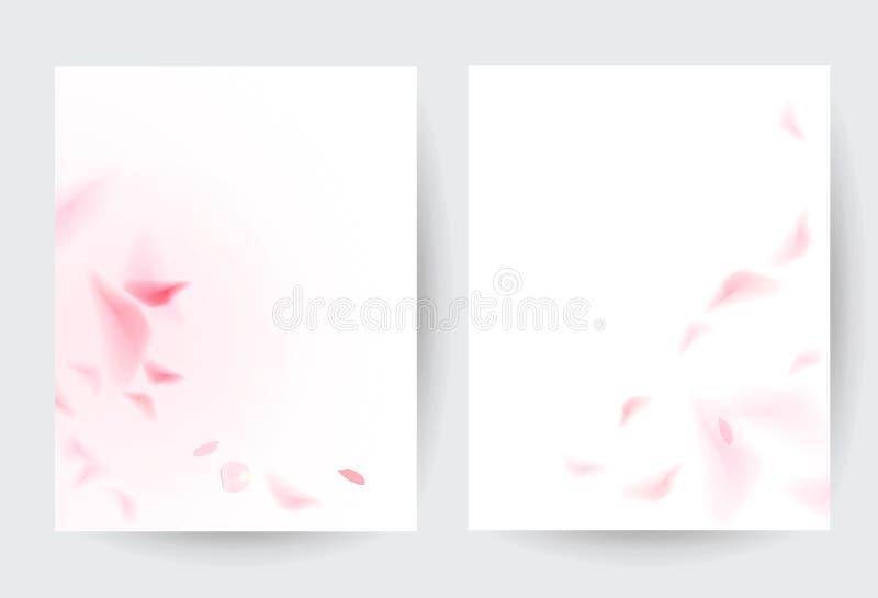Pétales de rose sur les cartes minimalistes de vecteur romantique blanc illustration libre de droits