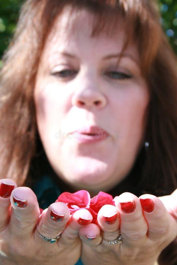 Pétales de soufflement de fleur photographie stock libre de droits