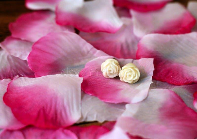 Pétales et boucles d'oreille roses photographie stock libre de droits