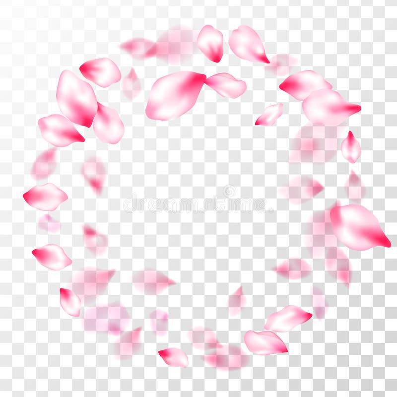 Pétales volants de rose japonais de fleurs de cerisier illustration libre de droits