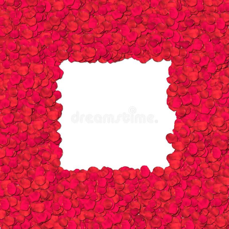 Pétalo de Rose - frontera ilustración del vector