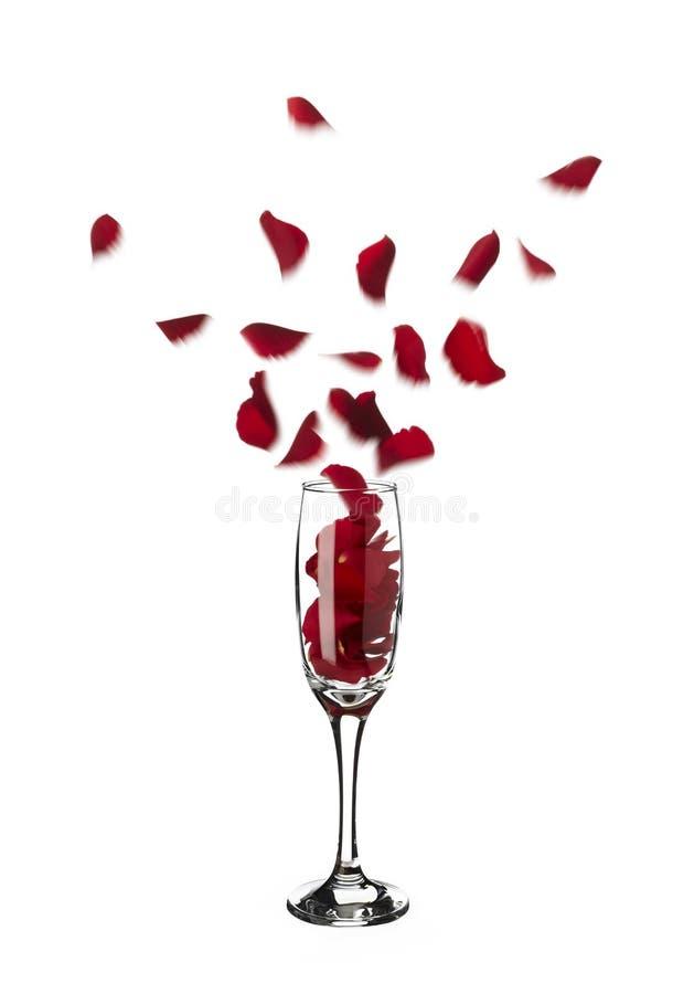 Pétalos color de rosa rojos haciendo estallar fuera del vidrio del champán en el aire fotos de archivo