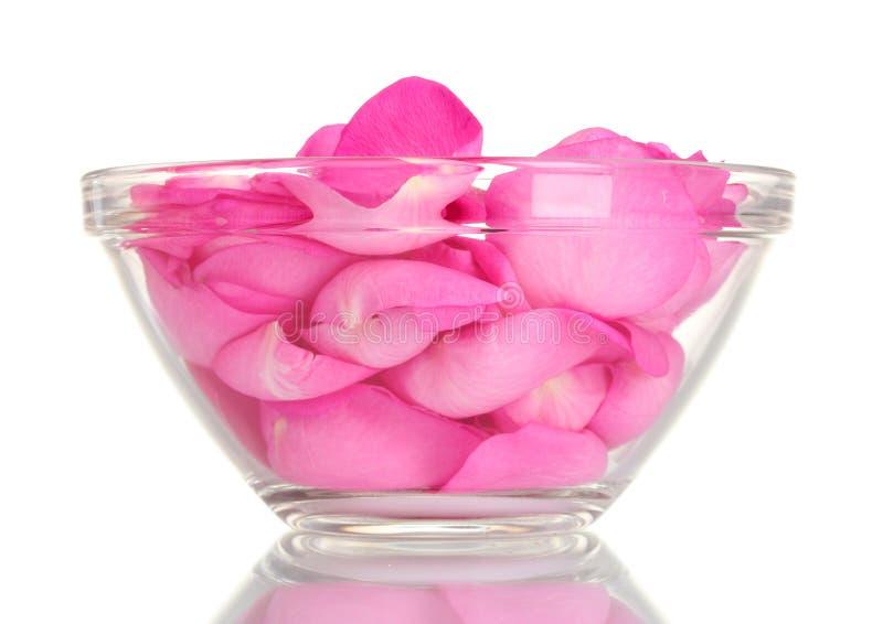 Pétalos color de rosa rosados hermosos fotos de archivo