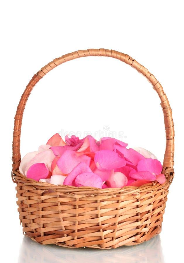 Pétalos color de rosa rosados hermosos en cesta imagen de archivo libre de regalías