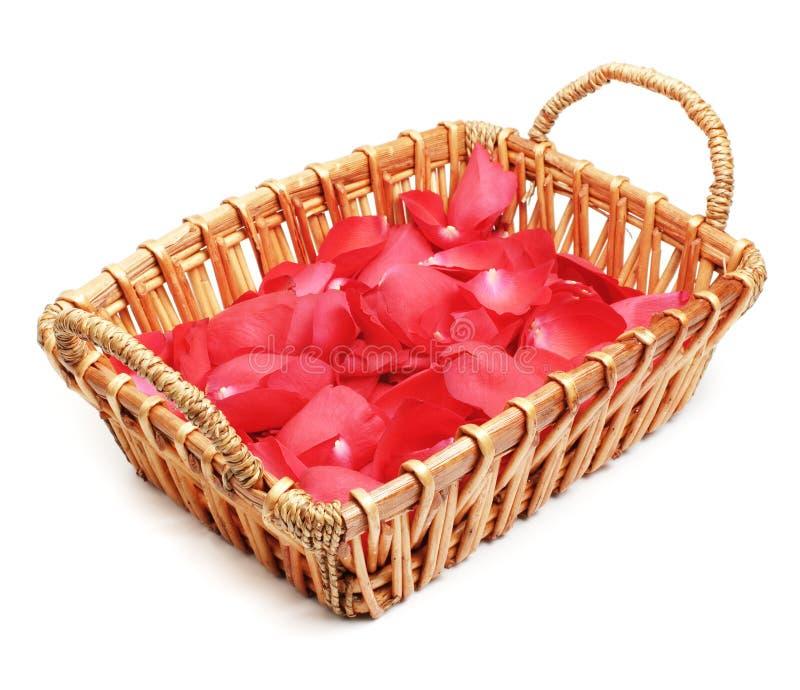 Pétalos de la flor en cesta foto de archivo libre de regalías