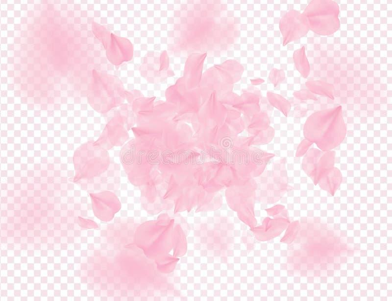 Pétalos de rosas rosados que caen en fondo transparente El vector cubrió el fondo de las tarjetas del día de San Valentín Ejemplo stock de ilustración