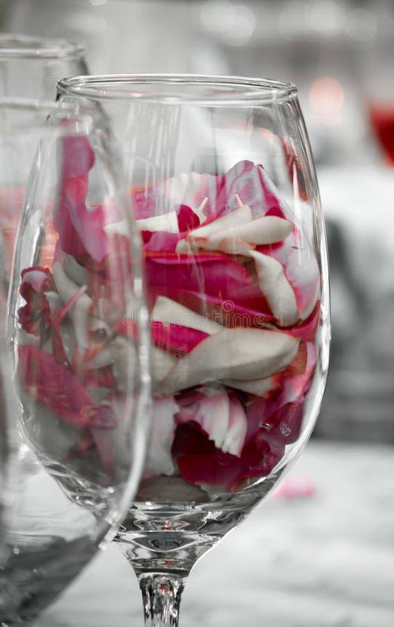 Pétalos de Rose en un vidrio fotos de archivo libres de regalías