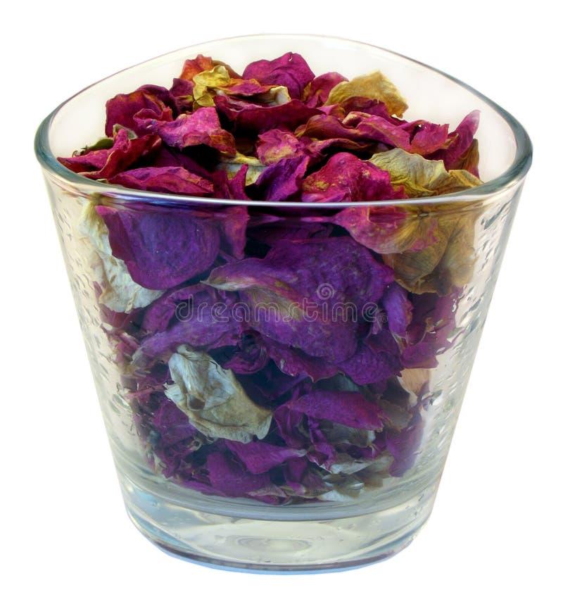 Pétalos de una rosa en un vidrio. imágenes de archivo libres de regalías