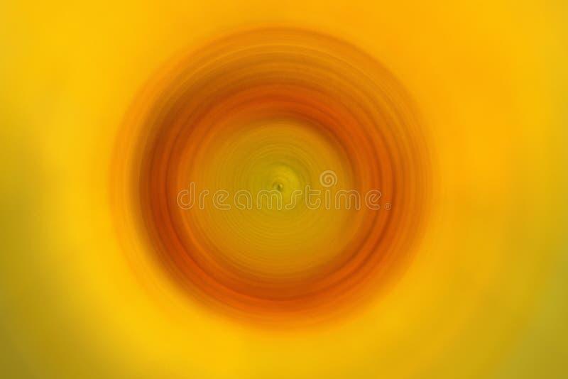 Pétalos del girasol en fondo radial del movimiento de la falta de definición Fondo abstracto del ejemplo de la naturaleza de la f fotografía de archivo